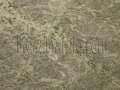 imperial-green-granite