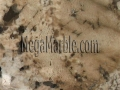 ivory-beauty-granite