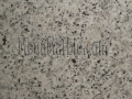 luna-pearl-flower-granite